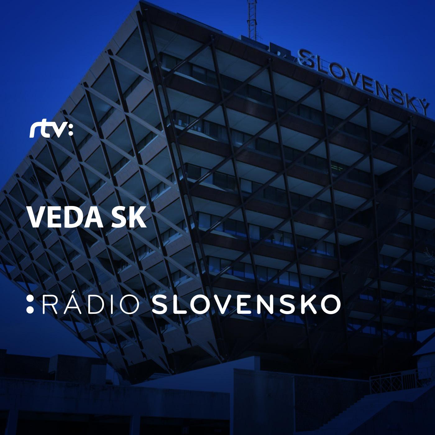 Veda SK