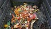 Biokompostovanie