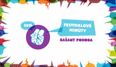 Festival Bažant Pohoda
