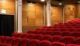 Divadlo pre mladých s Downovým syndrómom