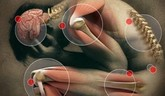 Novinky v liečbe bolesti