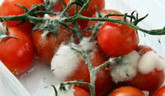 Pozor na potraviny, v lete sa rýchlejšie kazia