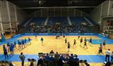 Basketbal - poháre / reprezentácia