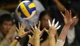 Volejbal - Zlatá Európska liga - zápasy