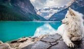 Literárny zemepis: Kanada