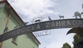 Bojnická zoo v čase pandémie deti vzdeláva v online priestore