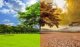 Másfél helyett 2,7 Celsius-fokkal emelkedhet bolygónk átlaghőmérséklete az évszázad végére