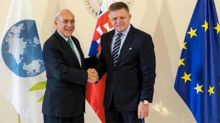 OECD chváli Slovensko za ekonomický rast