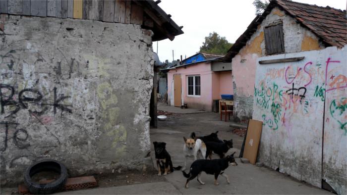 Roma-Siedlungen: Leben auf Eigengrund