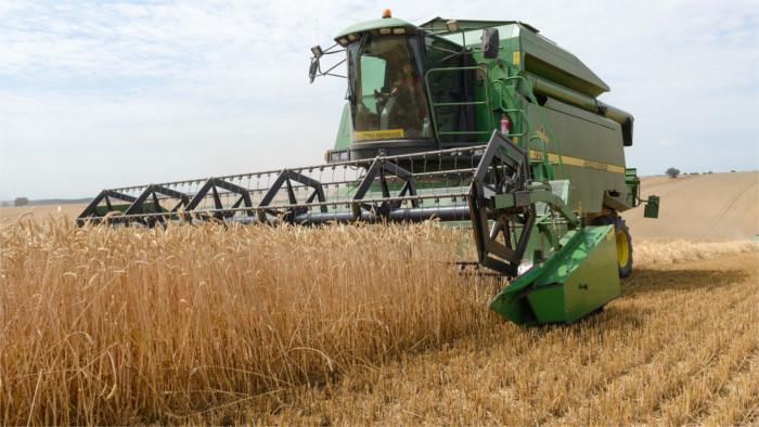 En Eslovaquia se ha puesto en marcha la cosecha de trigo