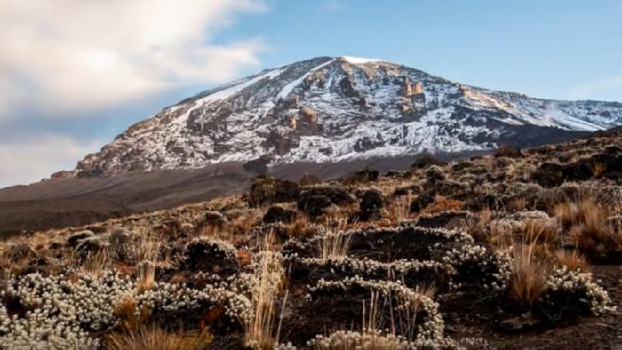 Cesta do života: Kilimandžáro