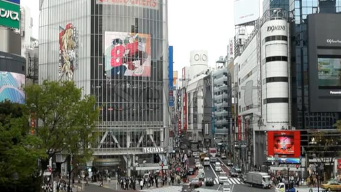 Japonsko zhora