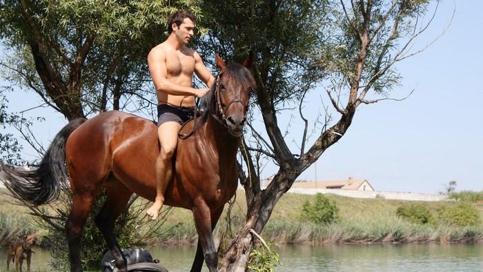 Aj kone sa  hrajú