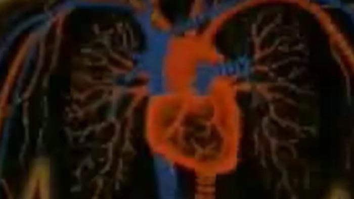 Narušitelia endokrinného systému