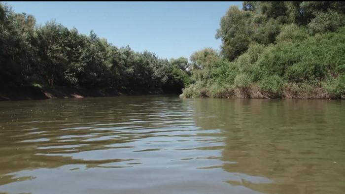 Niva rieky Latorice