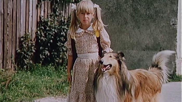 Monika a pes