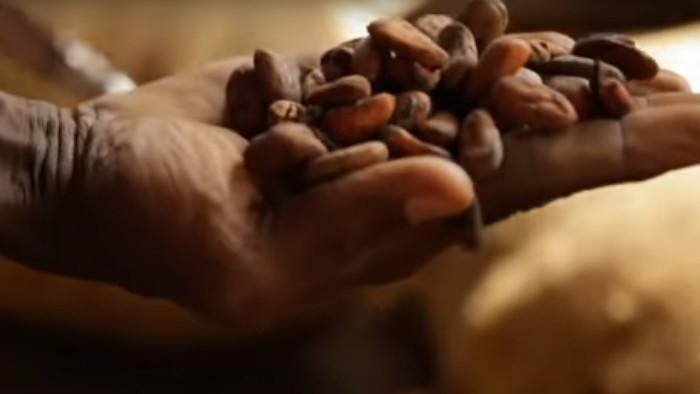 Čokoláda - nové čierne zlato