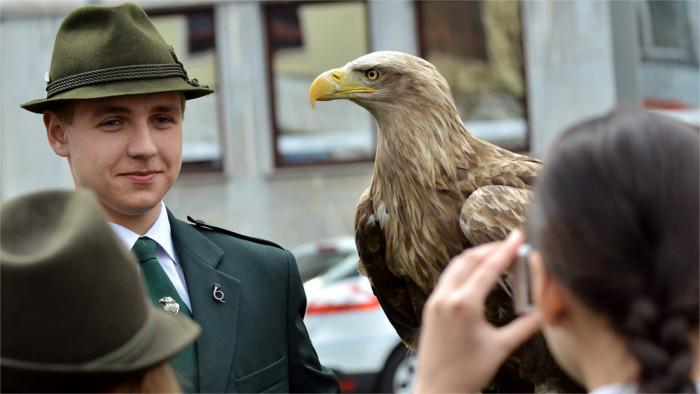 Традиции соколиной охоты в Словакии