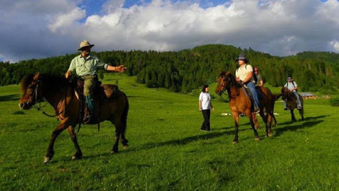 """Les invitamos al """"recorrido a caballo Hucul"""""""
