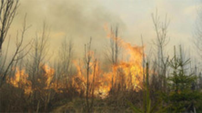 Požiar v Tanape