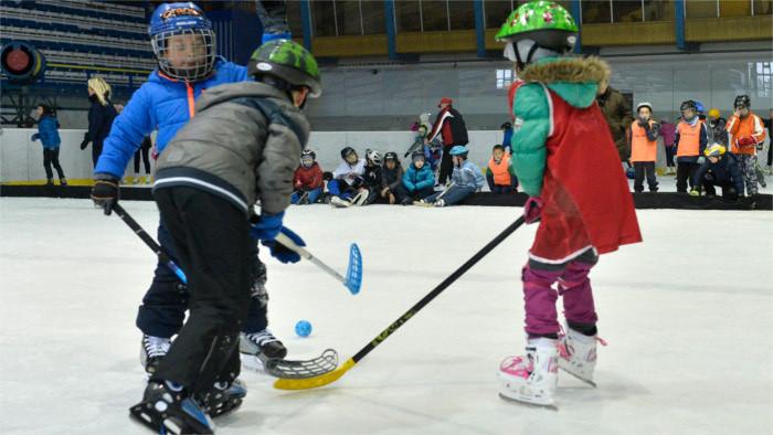 Sport Academies: Boost for Slovak ice hockey?
