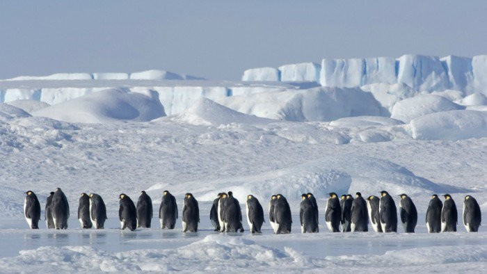 Antarktída - zamrznutá časová kapsula