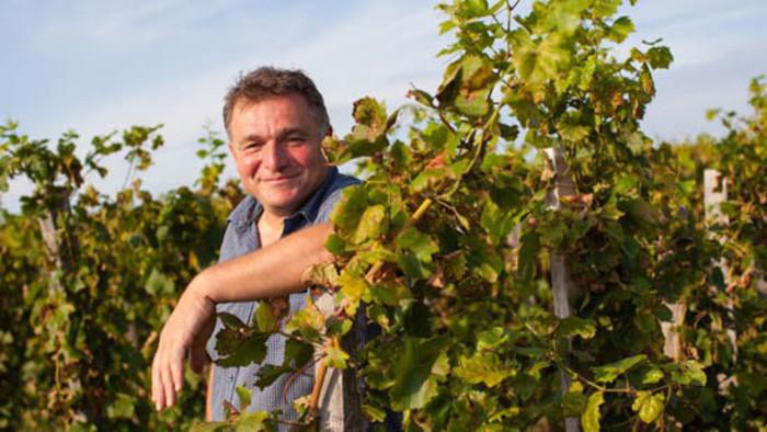 Les presentamos el vino natural de Strekov
