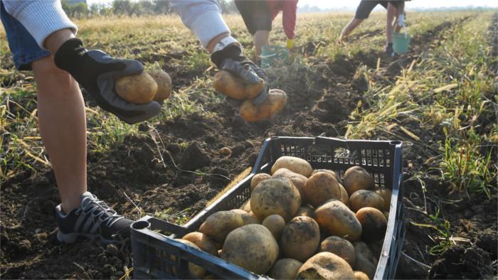Probleme der jungen Landwirte
