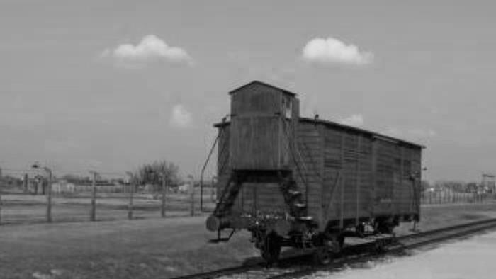 Nútené pracovné tábory (1950-1955)