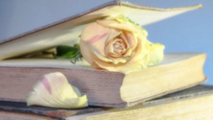 Literárium - Emília Filipová