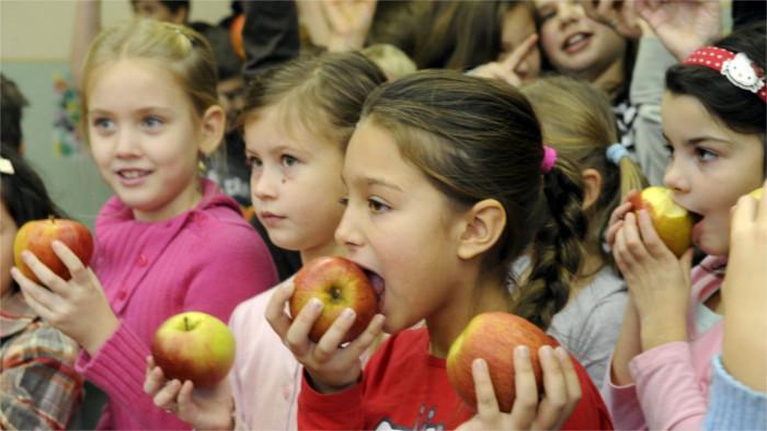 Rady, ako si uchováte vlastné ovocie čerstvé aj v zime
