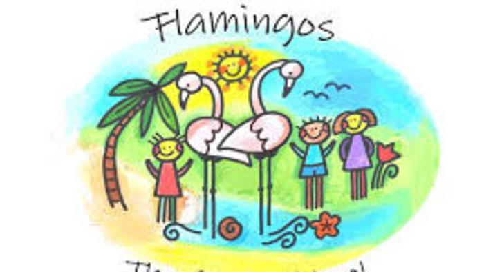 Flamingos z cyperskej Nikózie