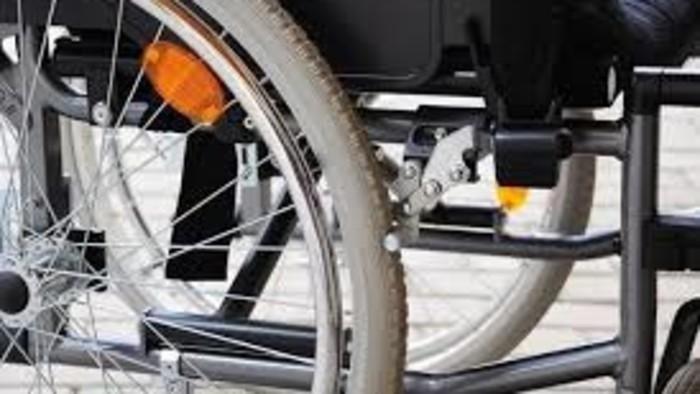 Az egészségkárosult és fogyatékossággal élő személyek biztosának jelentése