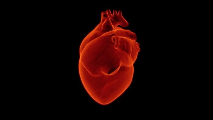 Ku Dňu srdca