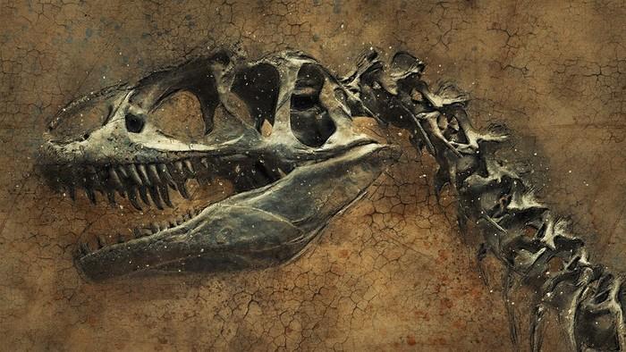 Unikatny objav dinosaura