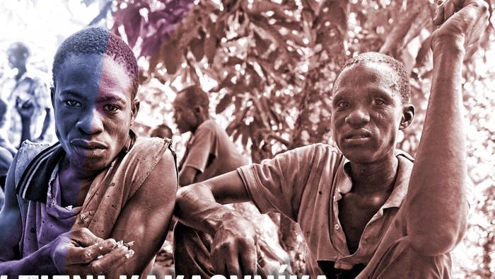 Dokument o pestovaní kakaa s výpoveďami robotníkov a pestovateľov