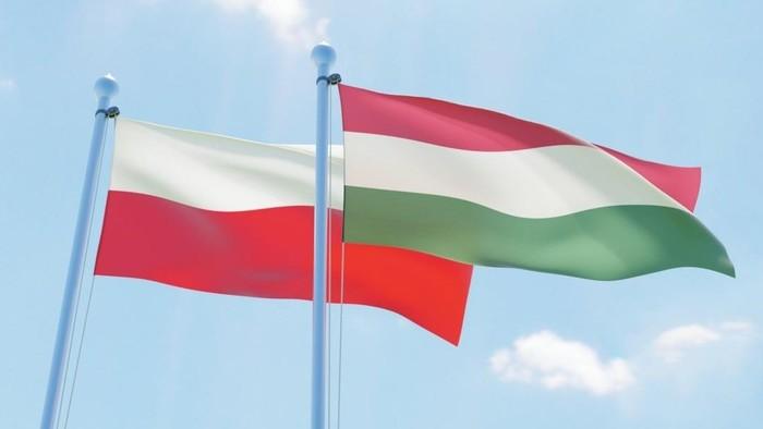 Dwa bratanki: lengyel-magyar stop az EU-ban