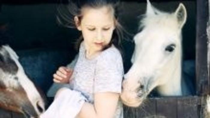 Čo by bolo, keby... sme jazdili na koni?
