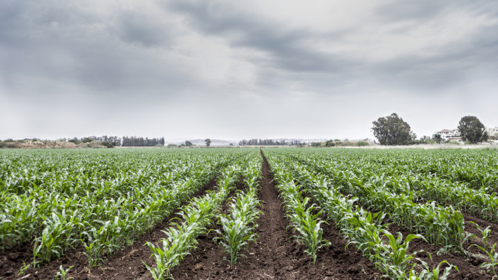 Agrosektor nedostal peniaze, ktoré by mu umožnili dostať sa na vyššiu úroveň