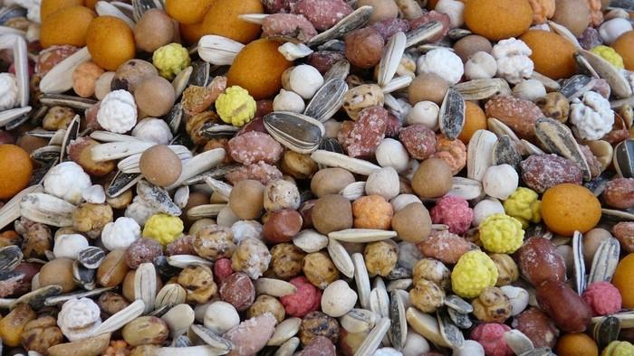 S výsevom semienok sa neponáhľame