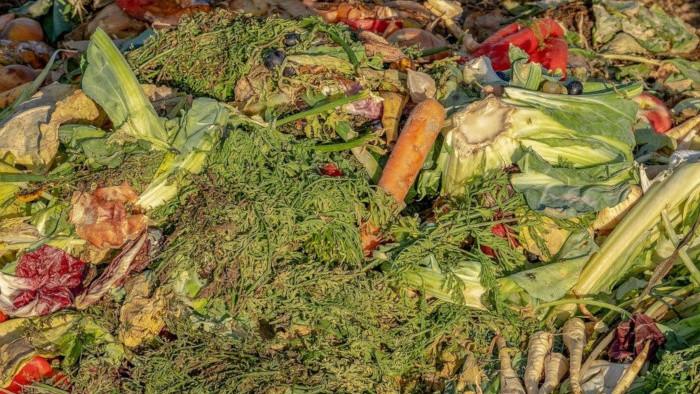 Zber bioodpadu vo Svidníku