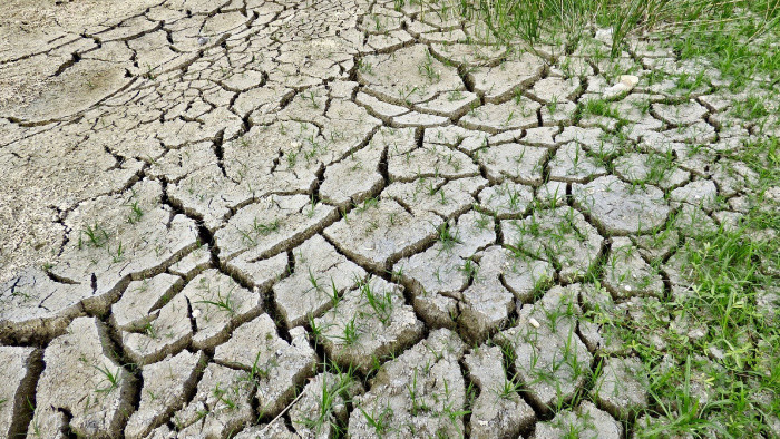 Cezhraničný projekt na tému klimatických zmien