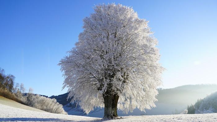 Zimná príroda v okrese Nové Zámky
