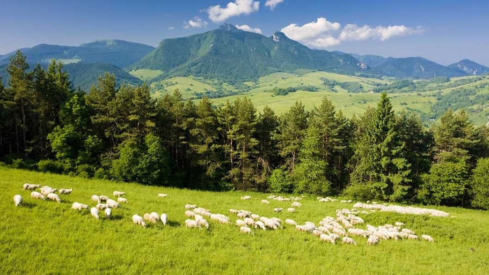 Parques nacionales de Eslovaquia - Muránska planina