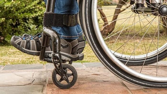 Svet financií / Poistenie invalidity