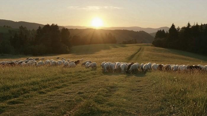 Čarovný dokument o živote Slovákov v harmónii s prírodou