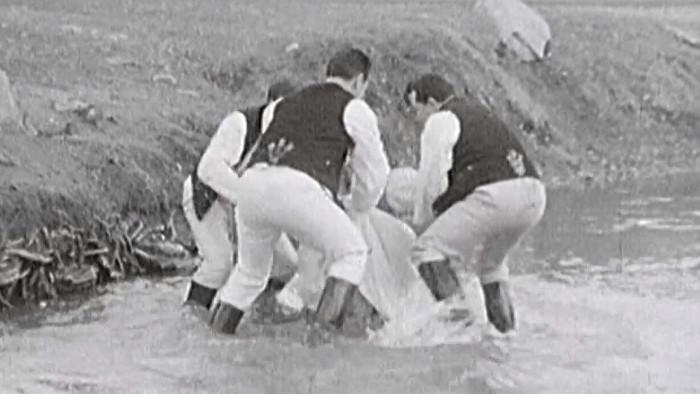 Digitálne vyretušovaný film z roku 1966 na obrazovkách RTVS