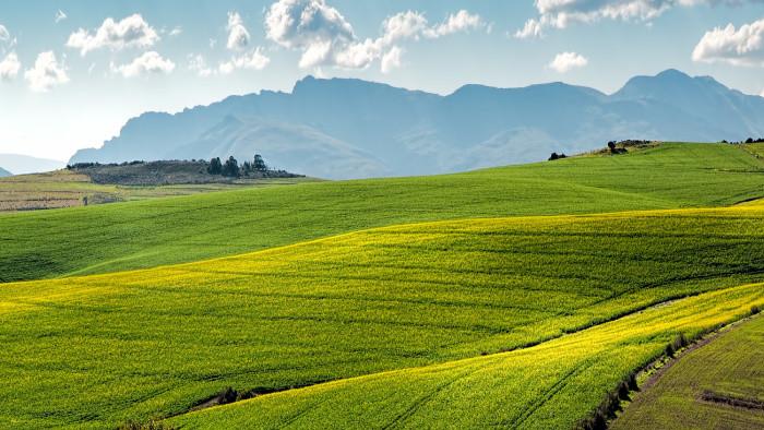 Slnečné dni tešia poľnohospodárov