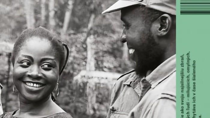 Chimamanda Ngozi Adichie: Polovica žltého slnka