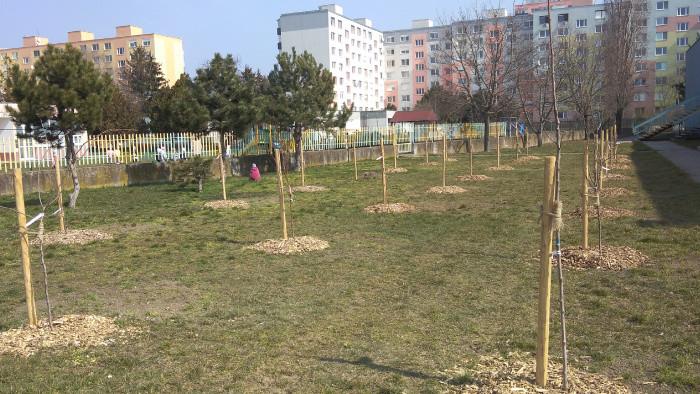 V Seredi vznikol mestský ovocný sad